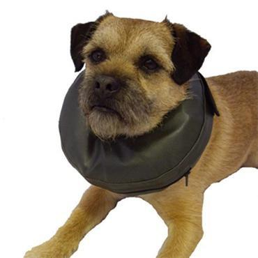 Post Surgery Protective Collar - S