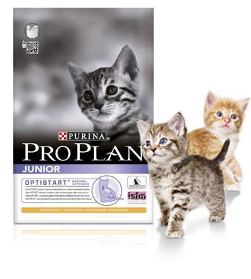PRO PLAN® Junior Cat - 3kg