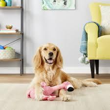 Kong Shaker Flamingo Dog Toy