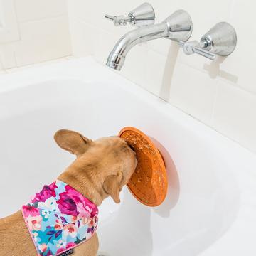 Lickimat Splash for Bathtime